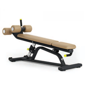 Pulse 650G Adjustable Abdominal Decline Bench
