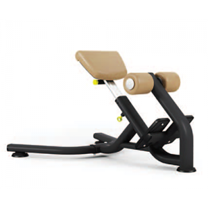 Pulse 665G Lower Back Extension Bench