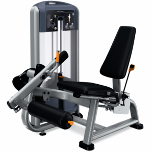 Precor DSL0605 Leg Extension