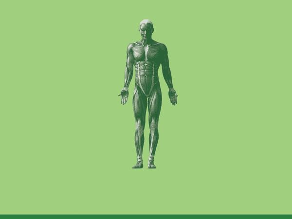 تمام-بدن-full-body